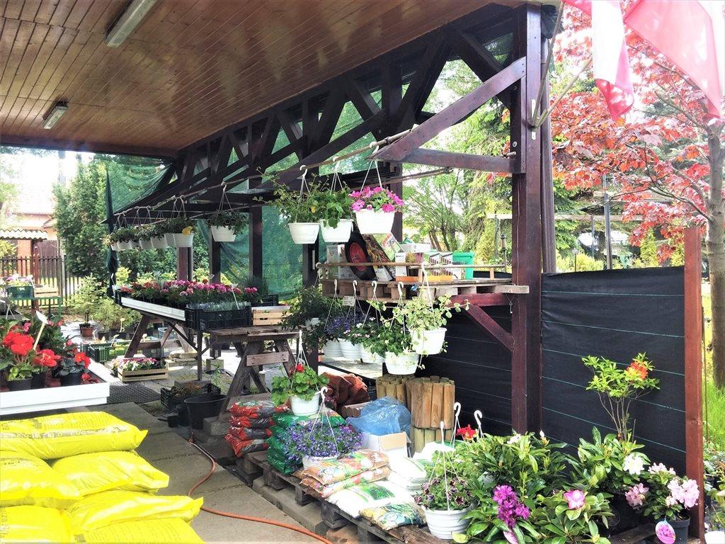Lokal użytkowy na sprzedaż Rynia, ul. Główna  130m2 Foto 9
