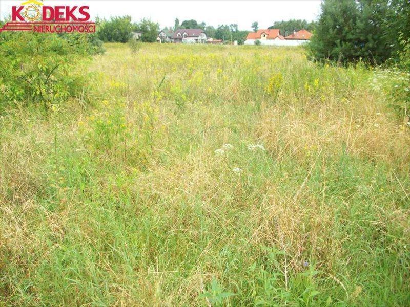 Działka rolna na sprzedaż Michałów-Reginów  4625m2 Foto 2