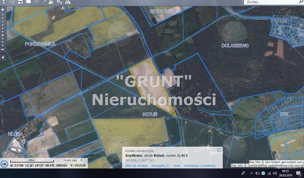 Działka rolna na sprzedaż Kotuń  150000m2 Foto 1