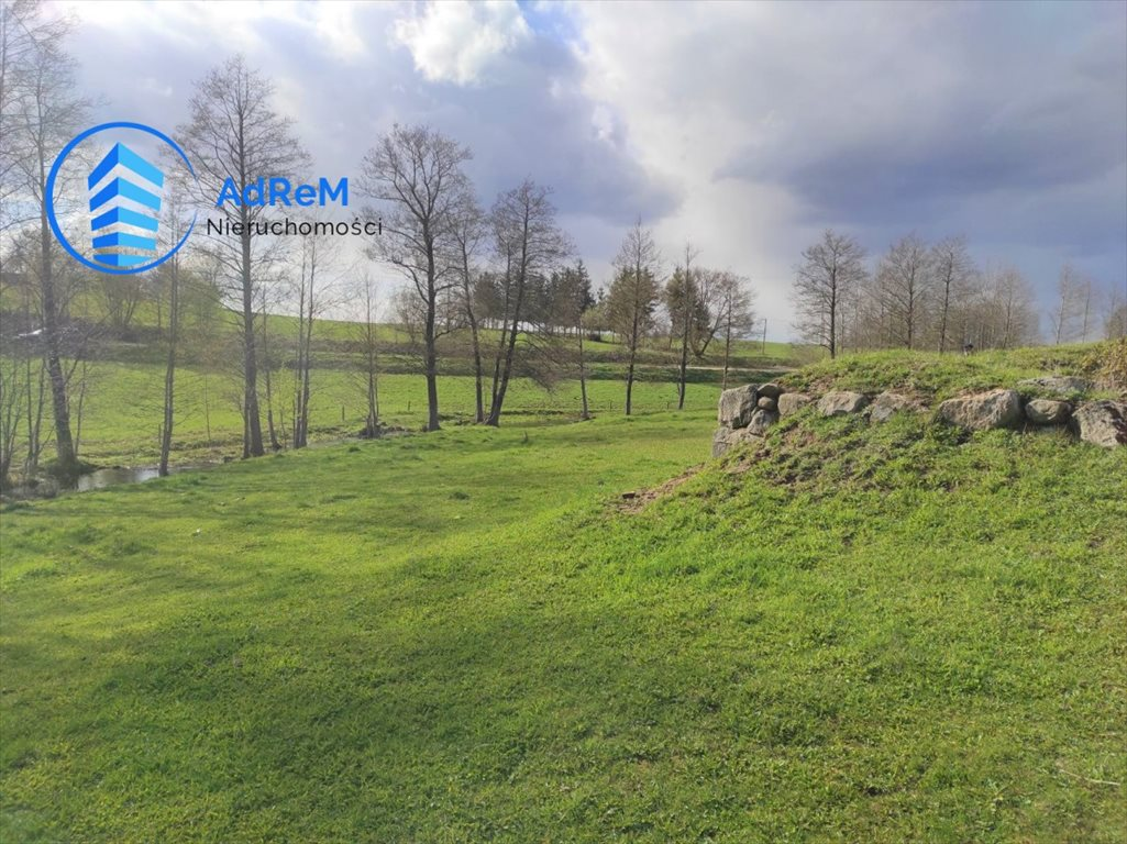 Działka siedliskowa na sprzedaż Rakówek  9900m2 Foto 3