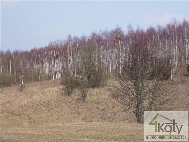 Działka rolna na sprzedaż Czarny Kierz, Czarny Kierz, Czarny Kierz  16500m2 Foto 6