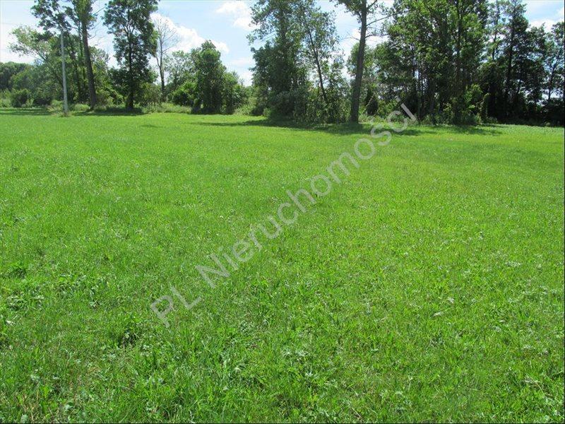 Działka rolna na sprzedaż Szymankowszczyzna  16600m2 Foto 6