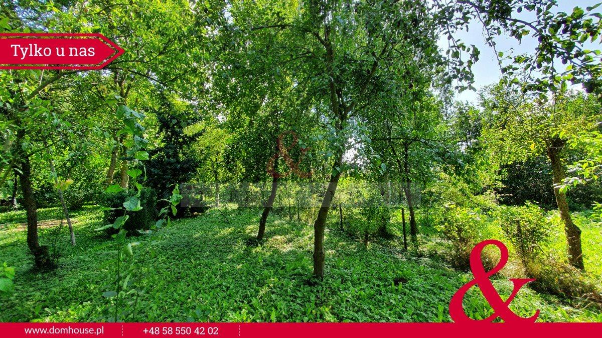 Działka rolna na sprzedaż Malbork  61000m2 Foto 7