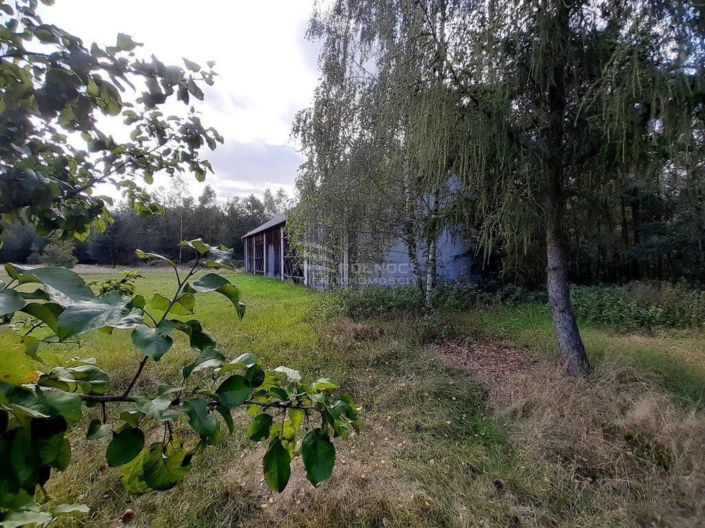Dom na sprzedaż Wólka Kościeniewicka  90m2 Foto 7