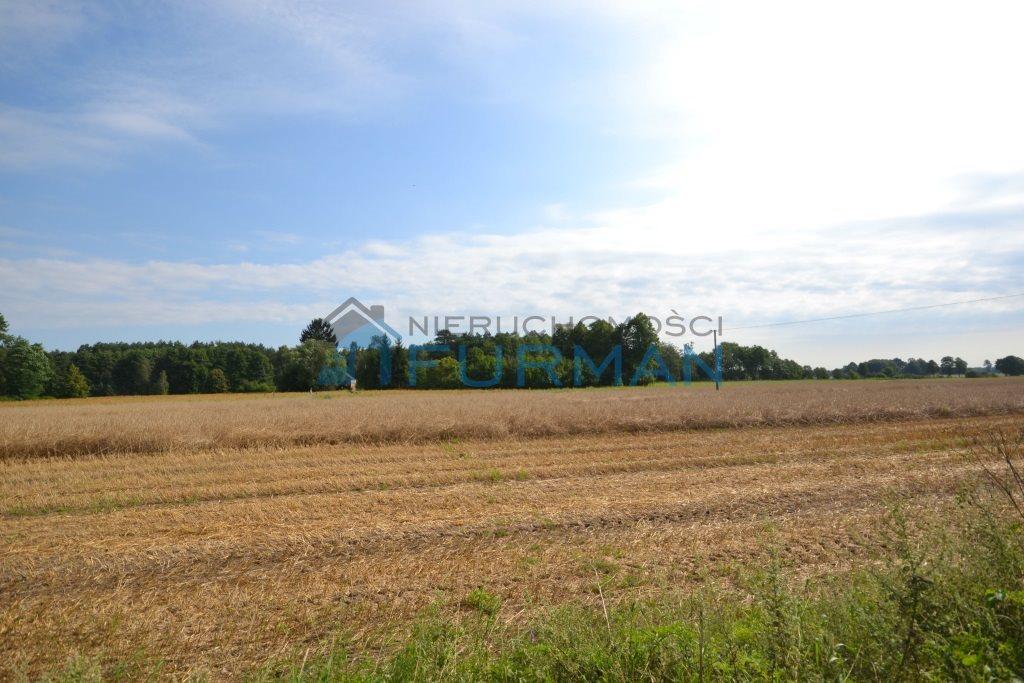 Działka leśna na sprzedaż Kuźnica Czarnkowska  76200m2 Foto 12