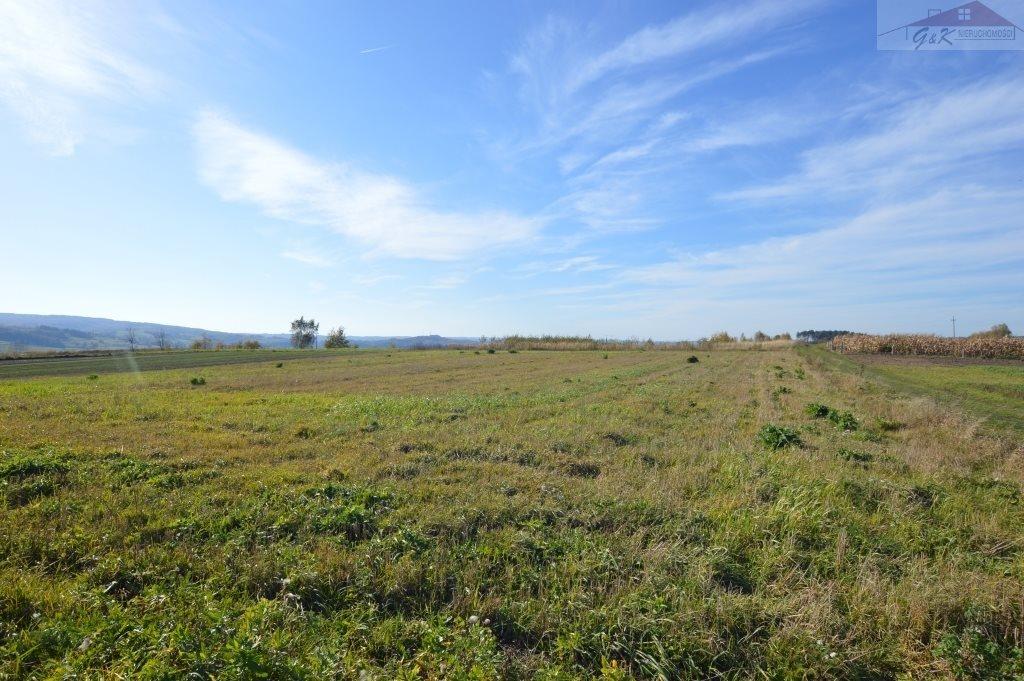 Działka rolna na sprzedaż Bachórzec  7000m2 Foto 1
