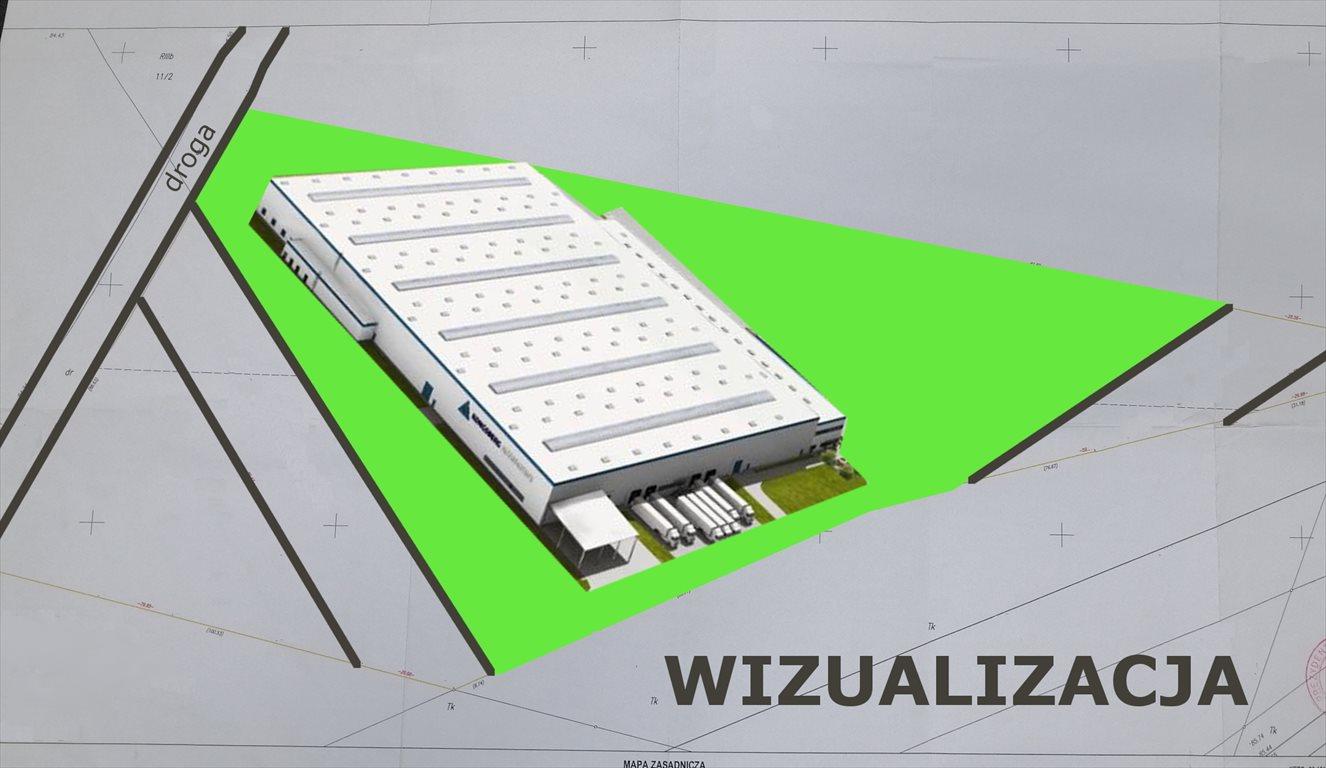 Działka inwestycyjna na sprzedaż Poznań, Nowe Miasto, Żegrze, Sarbinowska  12562m2 Foto 3