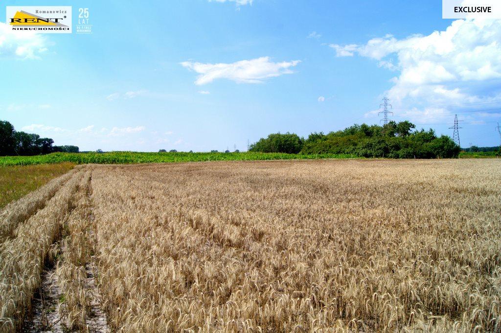 Działka rolna na sprzedaż Kobylanka  3001m2 Foto 3