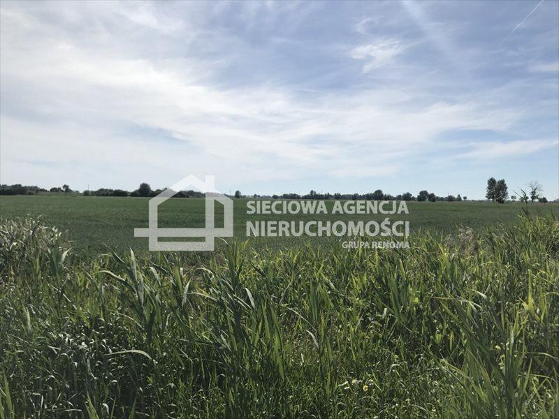 Działka rolna na sprzedaż Rybina  77672m2 Foto 8