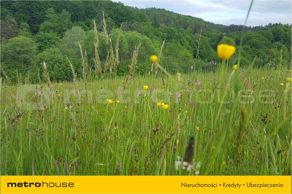Działka rolna na sprzedaż Średnia Wieś, Lesko  10300m2 Foto 2