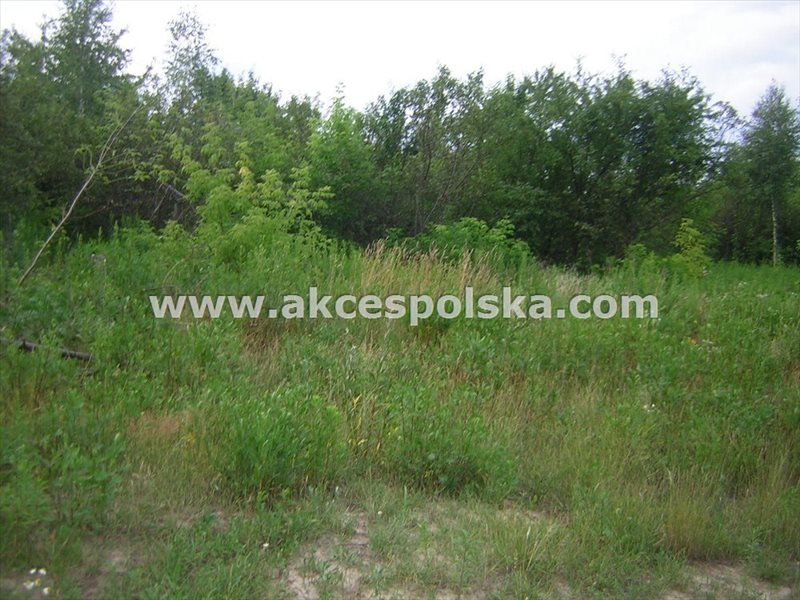 Działka budowlana na sprzedaż Konstancin-Jeziorna, Skolimów  1650m2 Foto 1