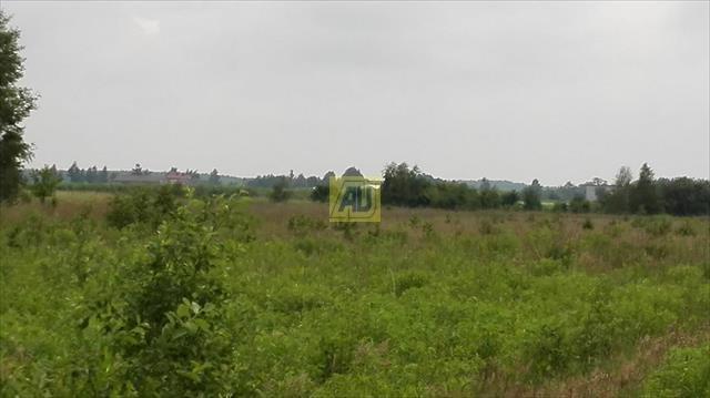 Działka budowlana na sprzedaż Nowe Racibory  15000m2 Foto 3