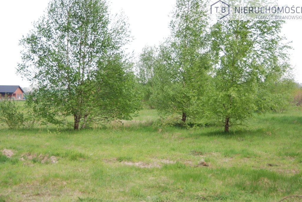 Działka budowlana na sprzedaż Lusowo, Wierzbowa  2827m2 Foto 3