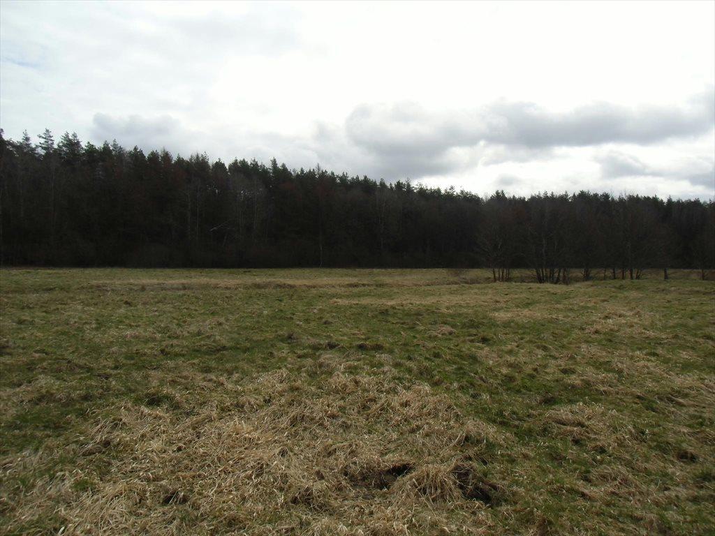 Działka rolna na sprzedaż Tawęcino  136800m2 Foto 7