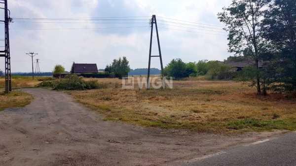 Działka budowlana na sprzedaż Wilczyn, Wilczyn  1186m2 Foto 3