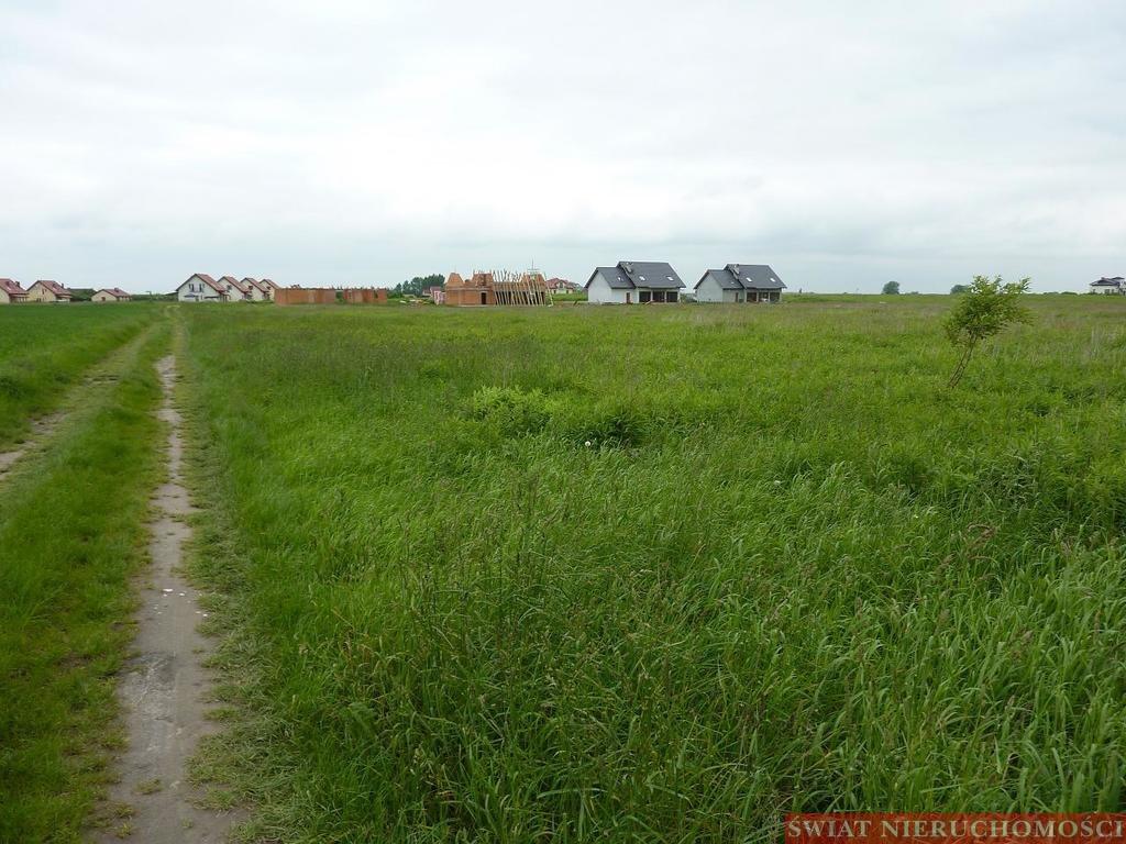 Działka rolna na sprzedaż Bogdaszowice  36900m2 Foto 1