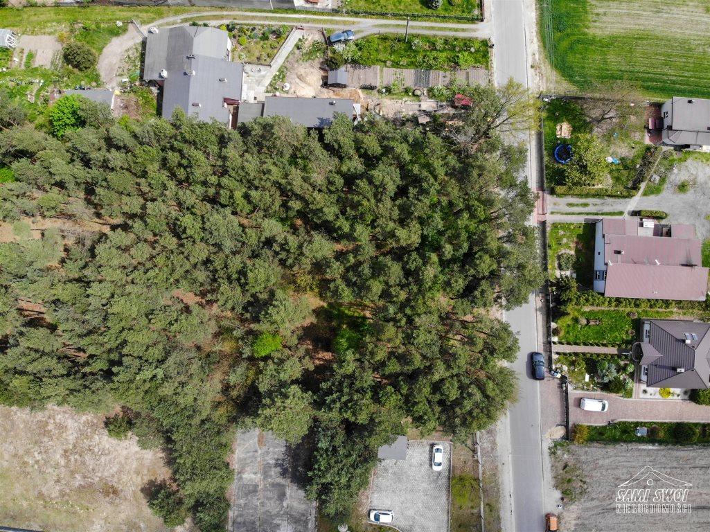 Działka leśna na sprzedaż Pożdżenice  6206m2 Foto 2