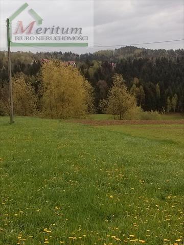 Działka na sprzedaż Gródek nad Dunajcem  4000m2 Foto 2