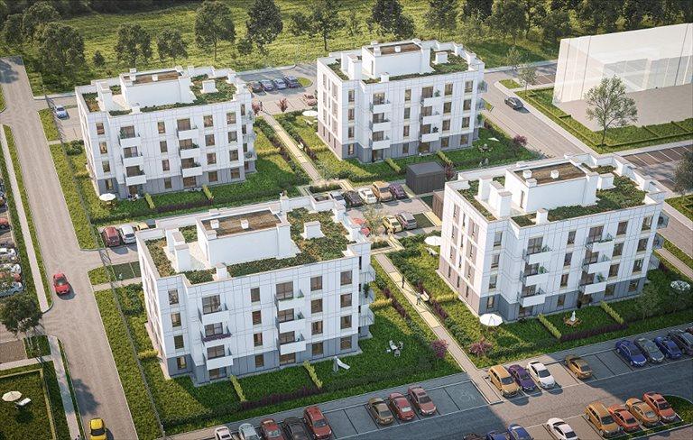 Zielone Zamienie Zamienie, Waniliowa/Czekoladowa  Foto 4