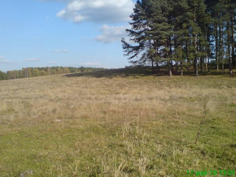 Działka budowlana na sprzedaż Wołowe Lasy N/Notecią  1500m2 Foto 1
