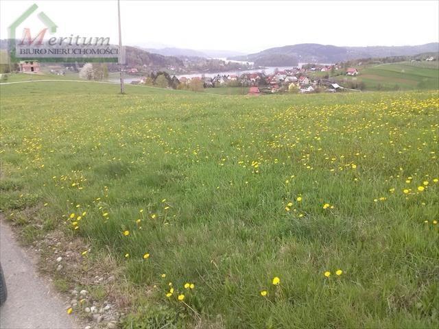 Działka na sprzedaż Gródek nad Dunajcem  4000m2 Foto 5